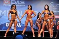 EVLS 13 Ms Olympia Amateure_17